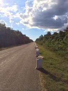 rice bags Cuba